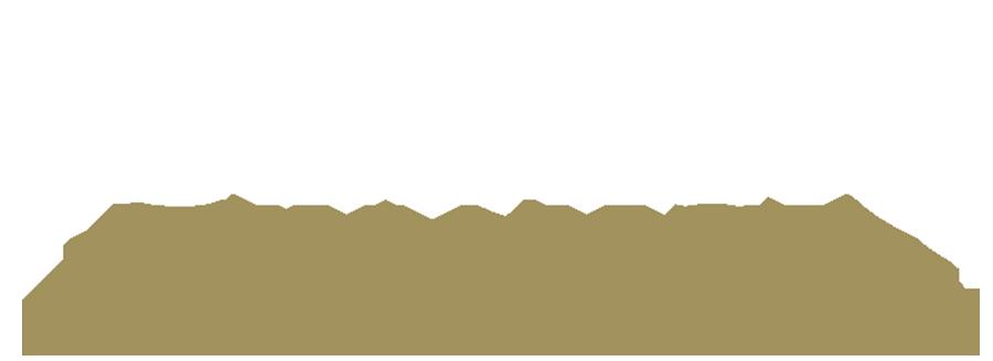 Iceberg Finance